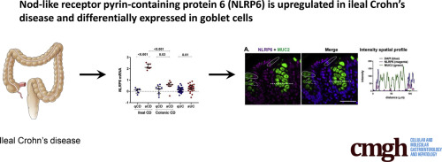 Nod-Like Receptor Pyrin-Containing Protein 6 (NLRP6) Is Up