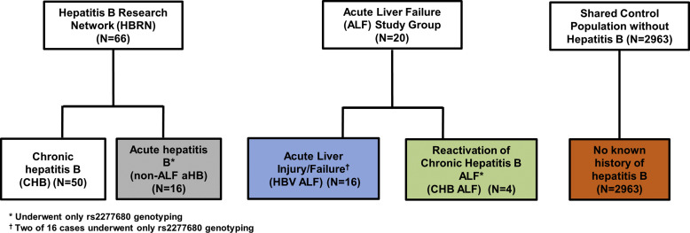 Host Genetic Variant in CXCL16 May Be Associated With